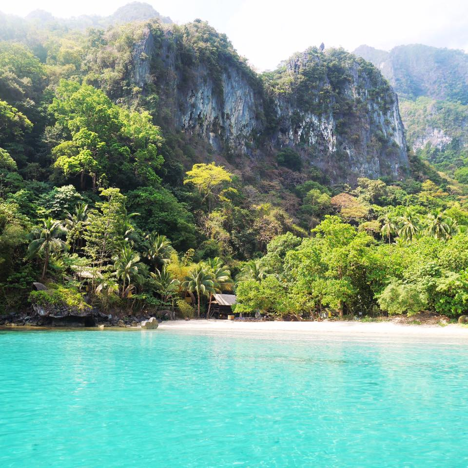 Tao Philippines | Philippines