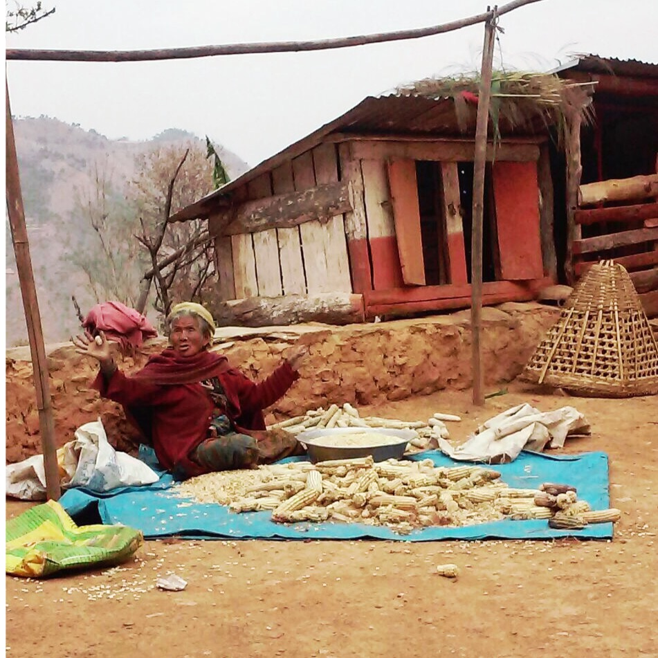 Nepal | VIN | Volontariat