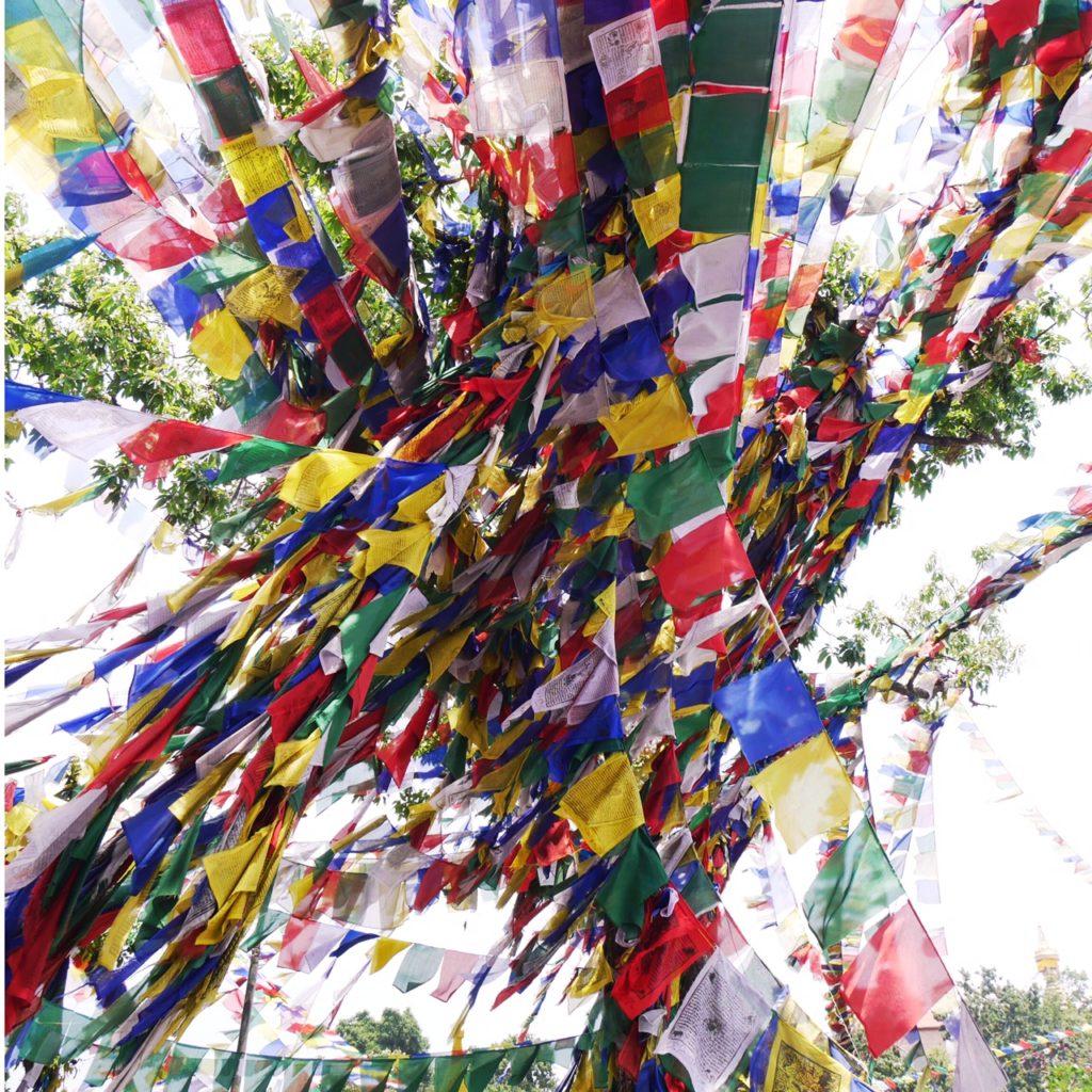 Drapeaux tibétains   Nepal